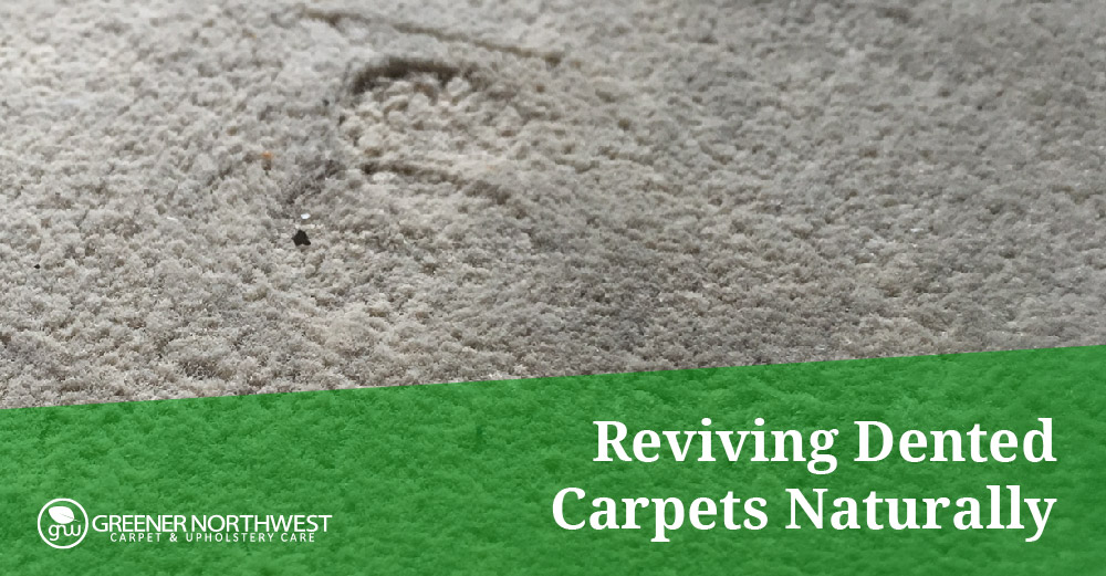 Revive Your Dented Carpet or Rug Quickly and Easily